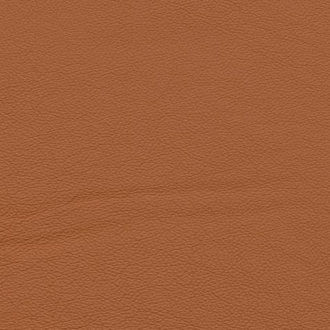 Kleurstalen voor thuis - Hermes Leer Cognac