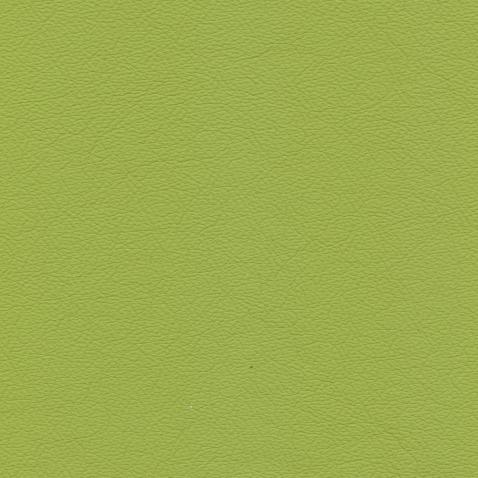 Kleurstalen voor thuis - Hermes Leer Lime