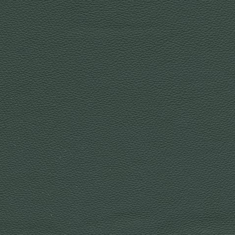 Kleurstalen voor thuis - Hermes Leer Verde