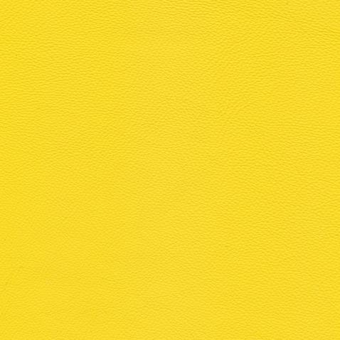 Kleurstalen voor thuis - Hermes Leer Yellow