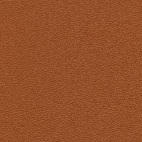 Kleurstalen voor thuis - Massif Leer Amaretto