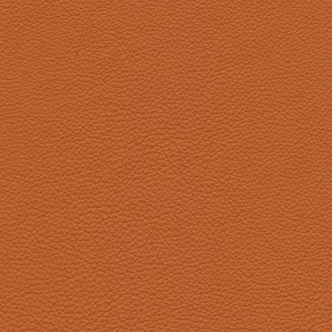 Kleurstalen voor thuis - Massif Leer Cognac