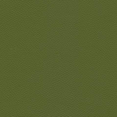 Kleurstalen voor thuis - Toledo Leer Apple Green