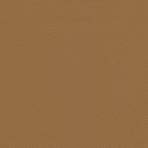 Kleurstalen voor thuis - Toledo Leer Camel