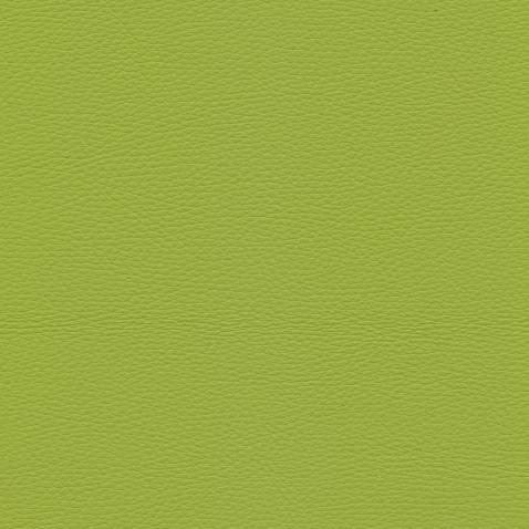 Kleurstalen voor thuis - Toledo Leer Lime