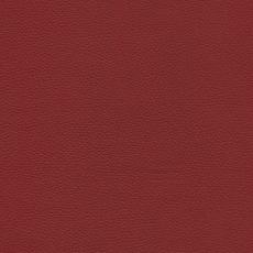 Toledo leer-117