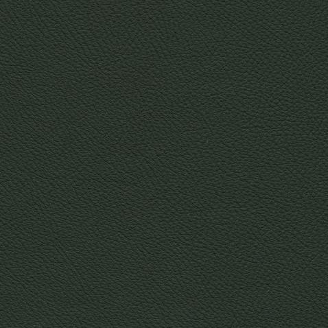 Kleurstalen voor thuis - Toledo Leer Verde